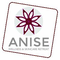 Anise logo design
