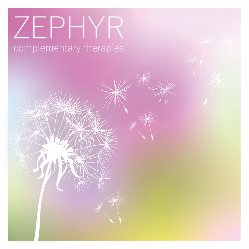 Zephyr marketing materials