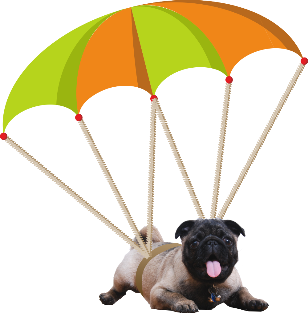 pup and parachute
