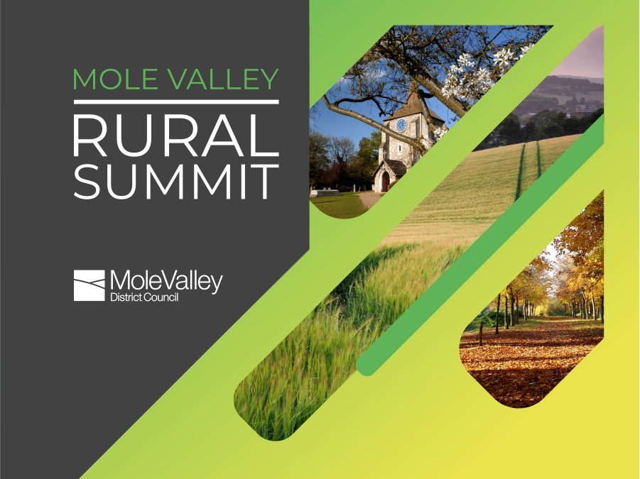 Marketing Materials: Design for Mole Valley's Rural Summit