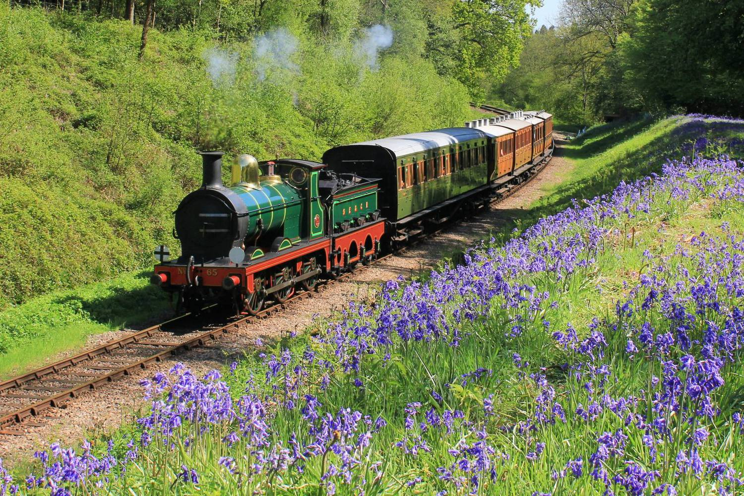 Bluebell Railways branding by MAD Ideas